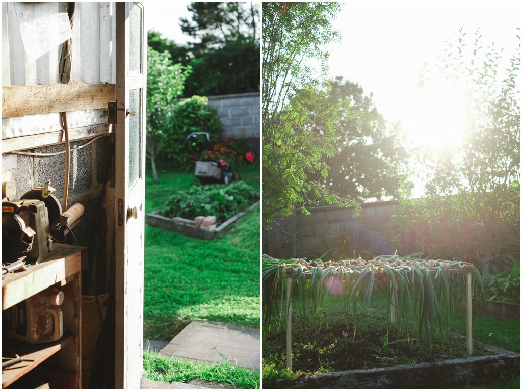 Personal Post – Summer eveninglight